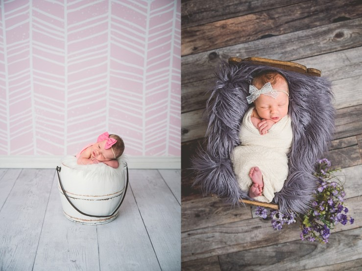 Carlisle Newborn Logan Utah Photographer