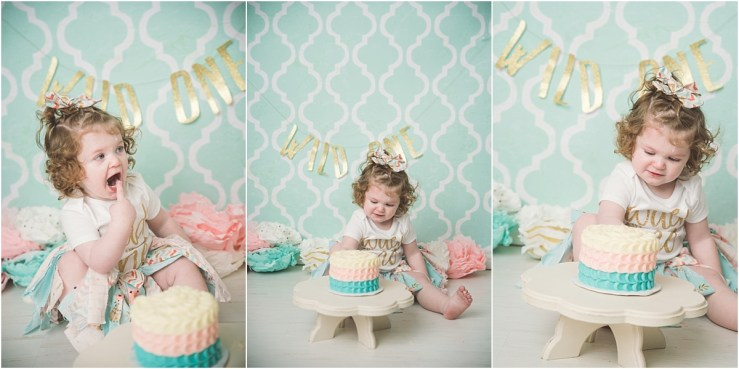 Logan Utah Cake Smash Pink Gold Teal