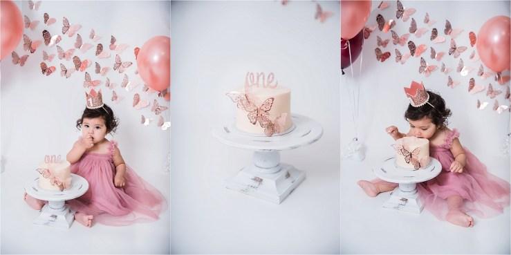 Logan Utah Cake Smash Photographer Butterfly