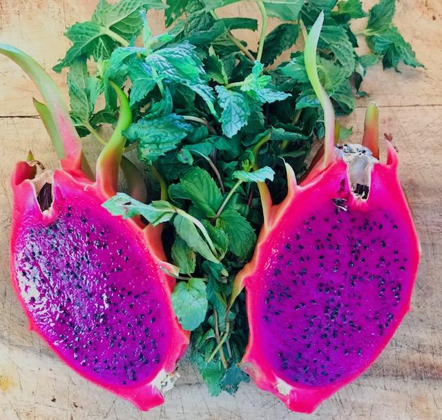 magenta dragonfruit