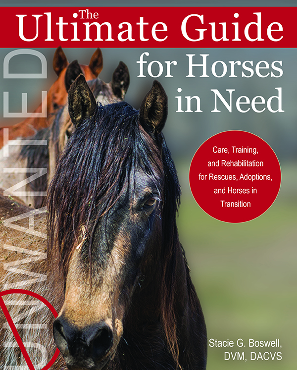 Cover Ultimate Guide to Horses in Need-horseandriderbooks