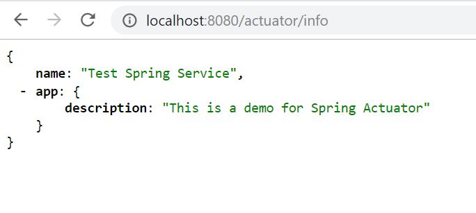 spring_boot_actuator_info