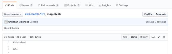 AWS Batch guide bash script