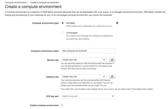 AWS Batch guide create environment