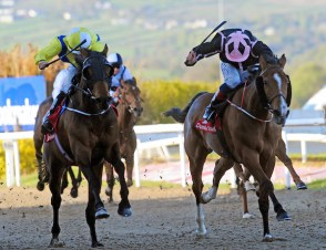Queen Rabab winning at Dundalk