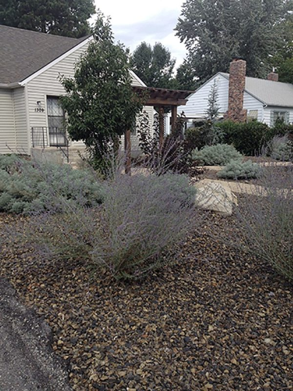 boise bench xeriscape - stack rock