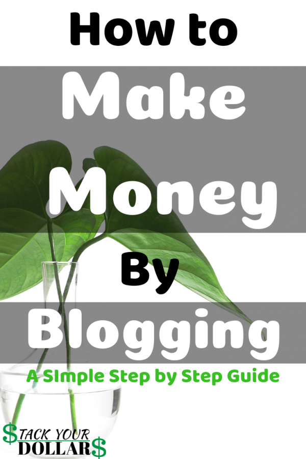 Can You Make Money By Blogging? A How To Guide Pin