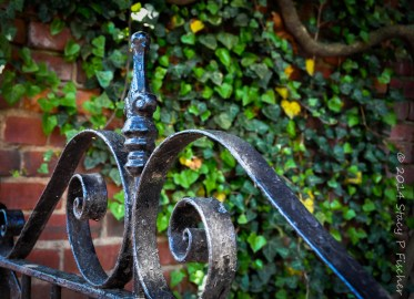 Photo of iron gate after color post-processing in Lightroom.