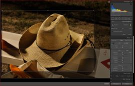Image imported into Lightroom and crop overlay applied to remove pizza box and center focus on the hat.
