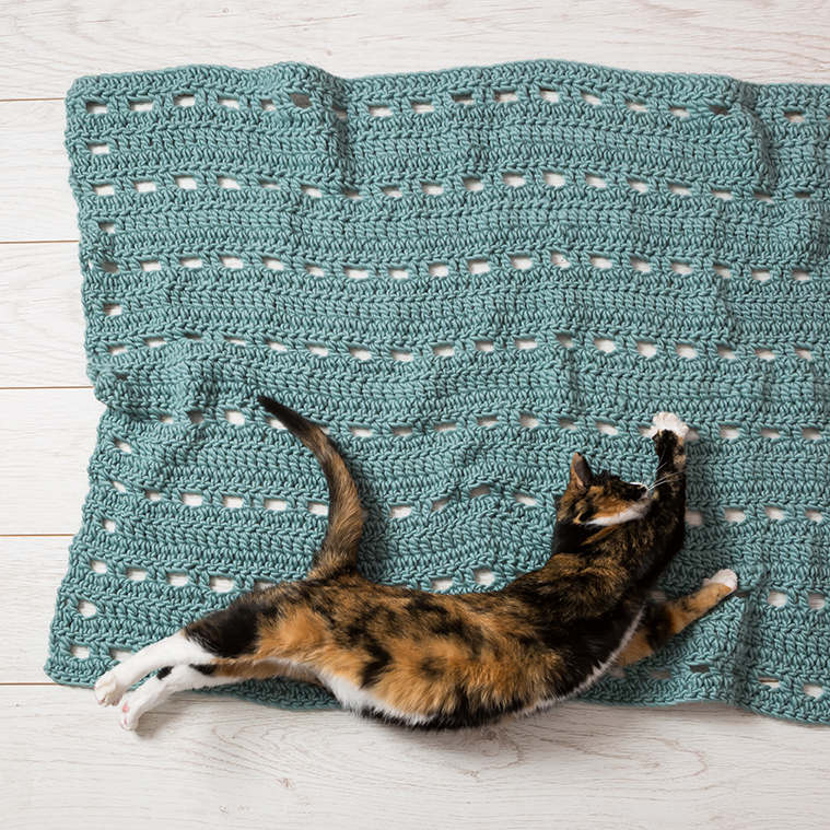 Ellie Cat - wool couture - blanket- Stacy Grant photography