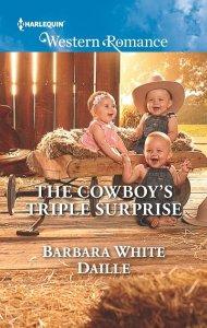 cowboy romance novel