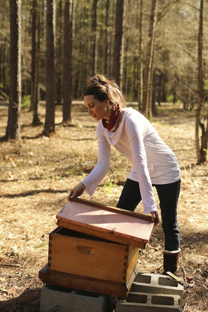 How to Clean Beehives After an Attack of Wax Moths – Stacy Lyn Harris