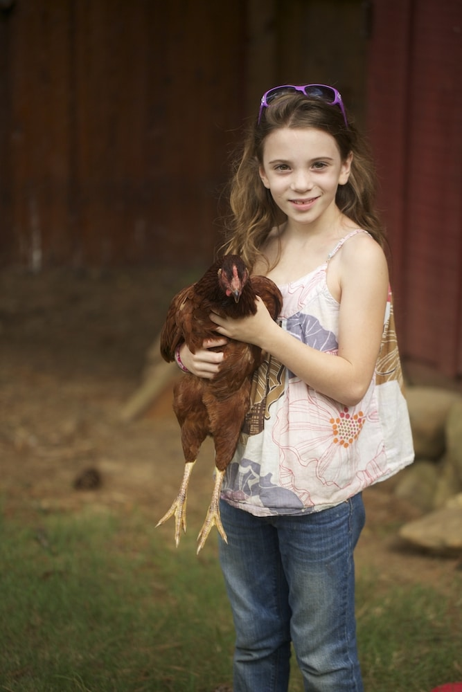 One of My Chicken Whisperes