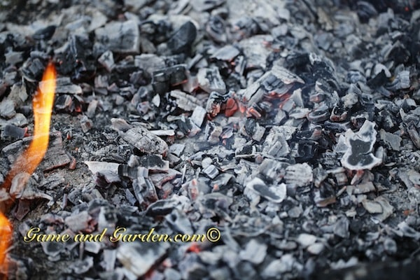 Do you ever find yourself staring at the embers of a fire? It is almost like it is hypnotic (if you believe in that kind of thing).