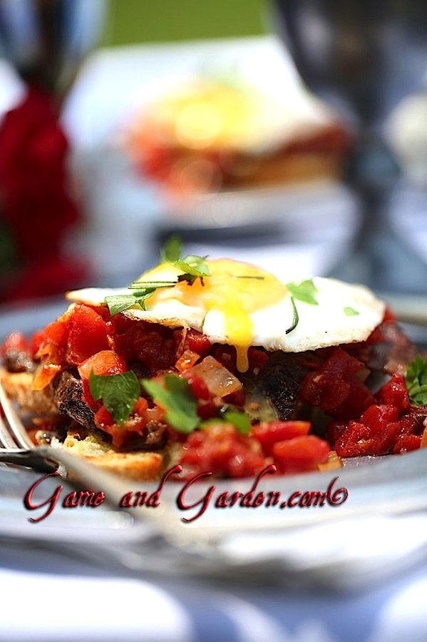This is the perfect Sunday Brunch for right after church. It is easy to make and ohh, so tasty! You can find this in my latest book Recipes and Tips for Sustainability.