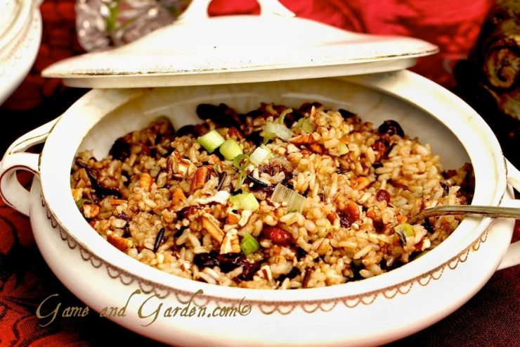 Even if you don't like rice, you will love this recipe! I have kids that complain of eating rice, but they all love this Wild Rice with Pecans, Cranberries, and Scallions recipe!