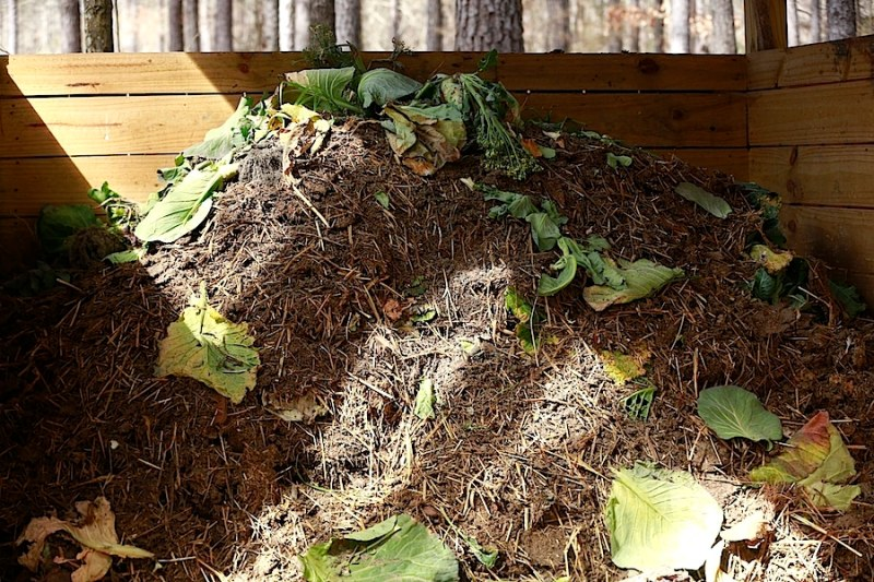 There are as many ways to compost as there are ways to garden.