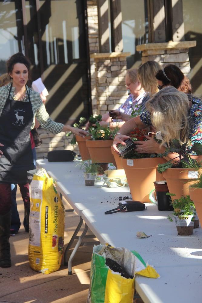 Stacy Lyn Harris teaches an herb class.