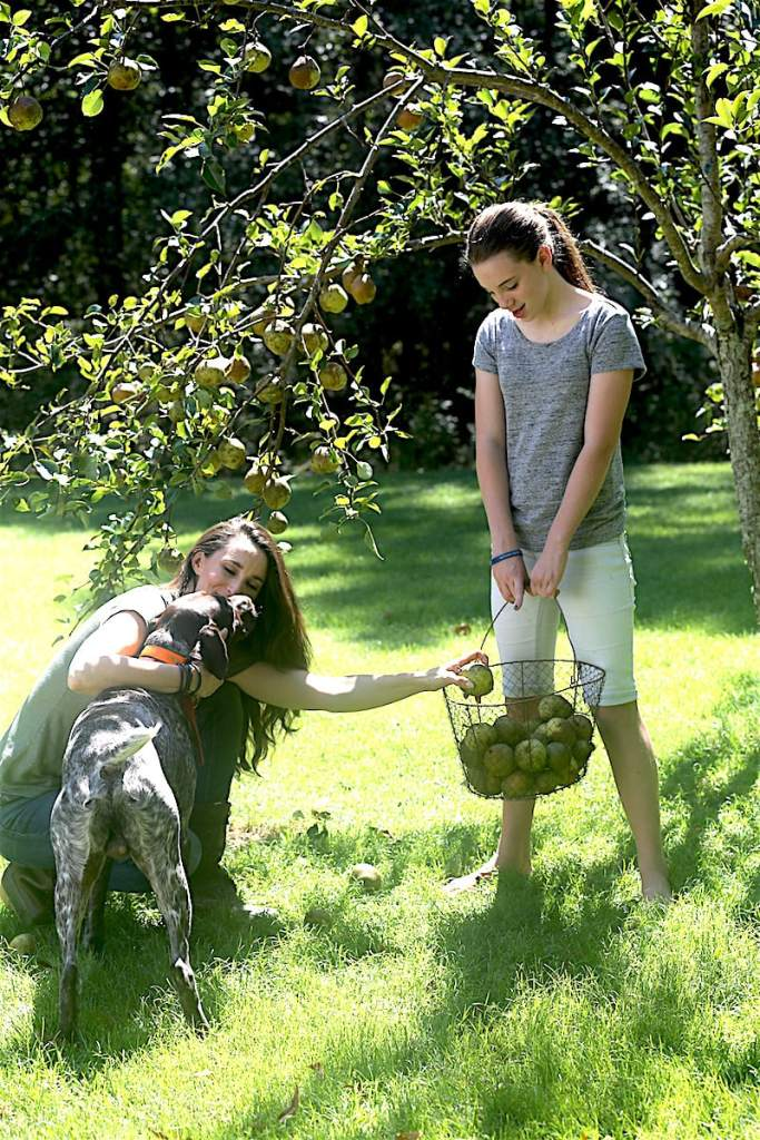 Mister Chippo decided to join in the pear picking fun with Anna and me!