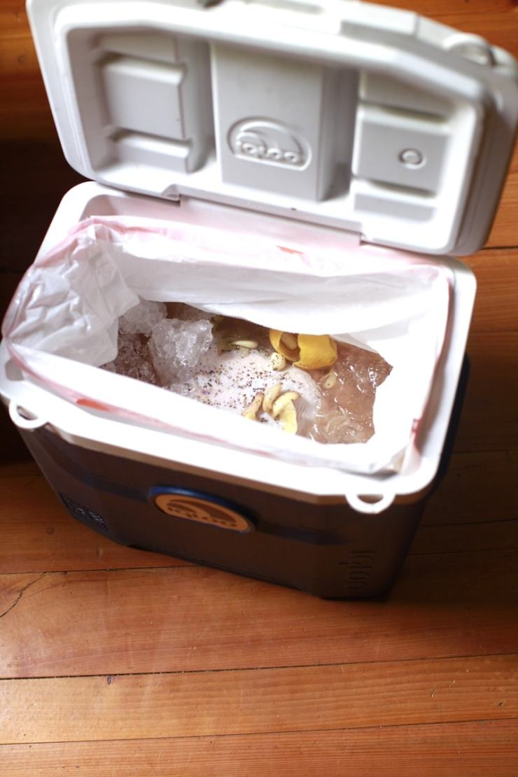 Brining Turkey is Simple using a Cooler and a Trash Bag!