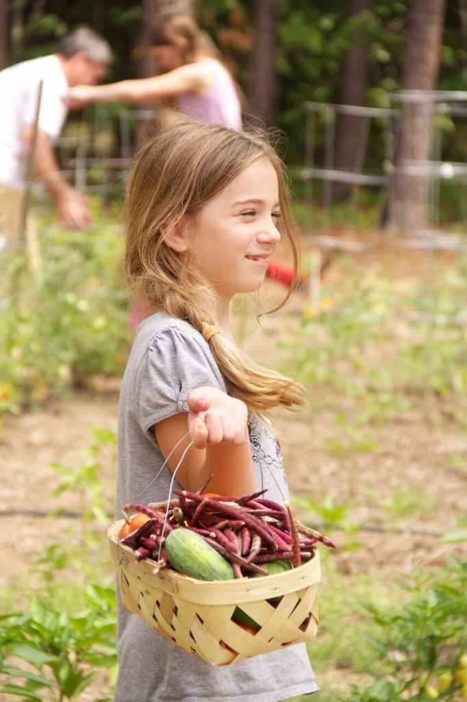 Stacy's daughter carrying harvested veggies
