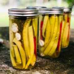 Okra pickling in mason jars, classic pickled okra recipe by stacy lyn harris