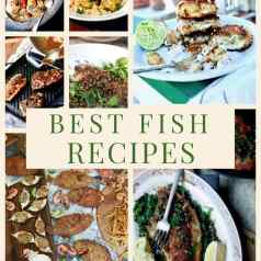 montage of Stacy Lyn's best fish recipe images
