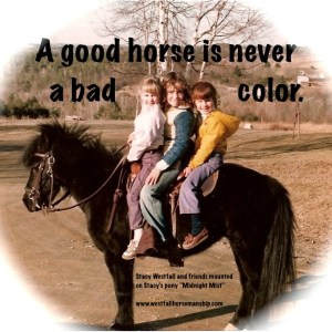 My first equine was a very well trained pony.