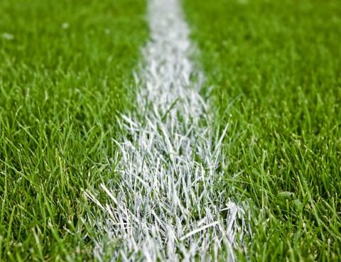 stadion_trava_crta