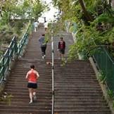 McElhone Stairs, Sydney