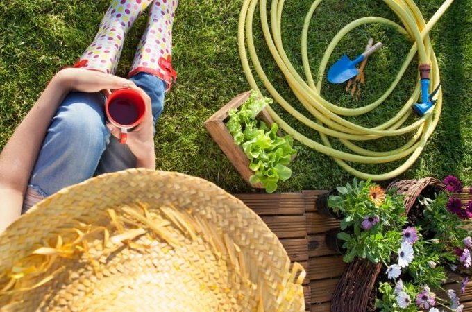 Städjättens trädgårdsskötsel blogginlägg om vårstädning i trädgården