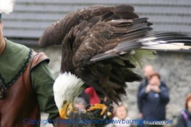 Flugshow-Burg-Hohenwerfen-006