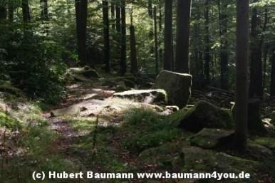 Weg Steinmark Schleiftor zur Karlshöhe 080