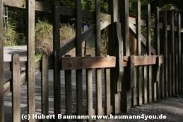 Weg Steinmark Schleiftor zur Karlshöhe 091