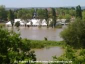 Aschaffenburg Hochwasser 2. Juni 2013 - 10