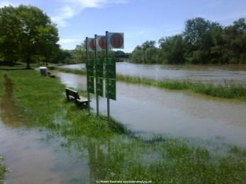 Aschaffenburg Hochwasser 2. Juni 2013 - 3