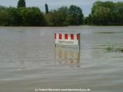 Aschaffenburg Hochwasser 2. Juni 2013 - 7