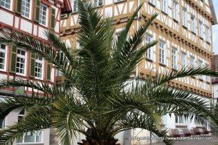 Leonberg Marktplatz mit Rathaus