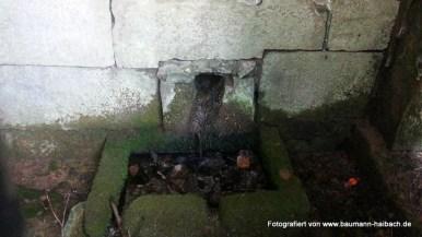 Brunnenstube Haibach Wendelberg 004