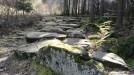 Ein steiniger Weg / Alter Schulweg, Dammbach - Geishöhe
