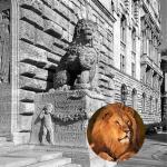 bereit für die Löwenstadt