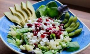 Salate und Bowls in Bamberg