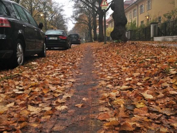 Feuchte Herbstblätter bilden einen schmierigen Belag auf vielen Radwegen   Foto: Link