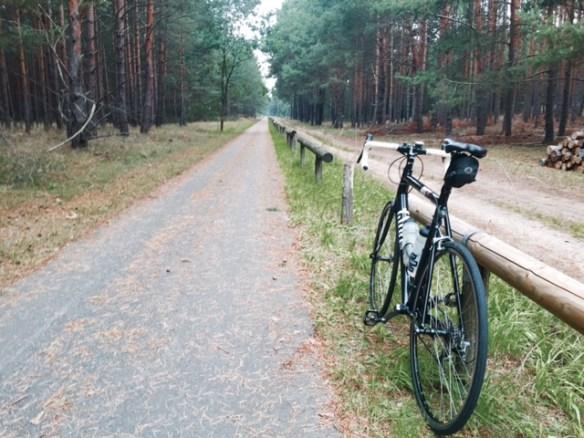 Gurkenradweg, Rennrad