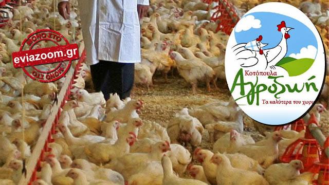 Ανατριχιαστικό εργατικό ατύχημα έγινε σε γνωστή πτηνοτροφική επιχείρηση στη Νέα Αρτάκη
