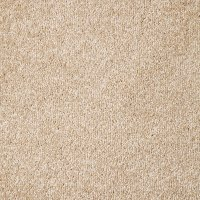 Carpet Underlay Types Australia - Carpet Vidalondon