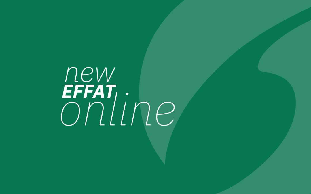 Effat website has a new look
