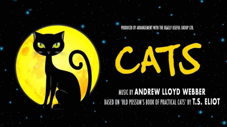 cats 2019 Kilworth House Theatre