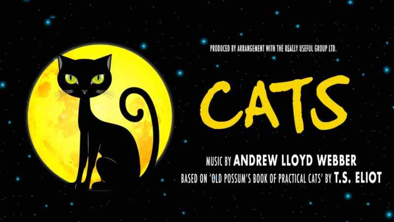 cats 2019 Kilworth House Theatre