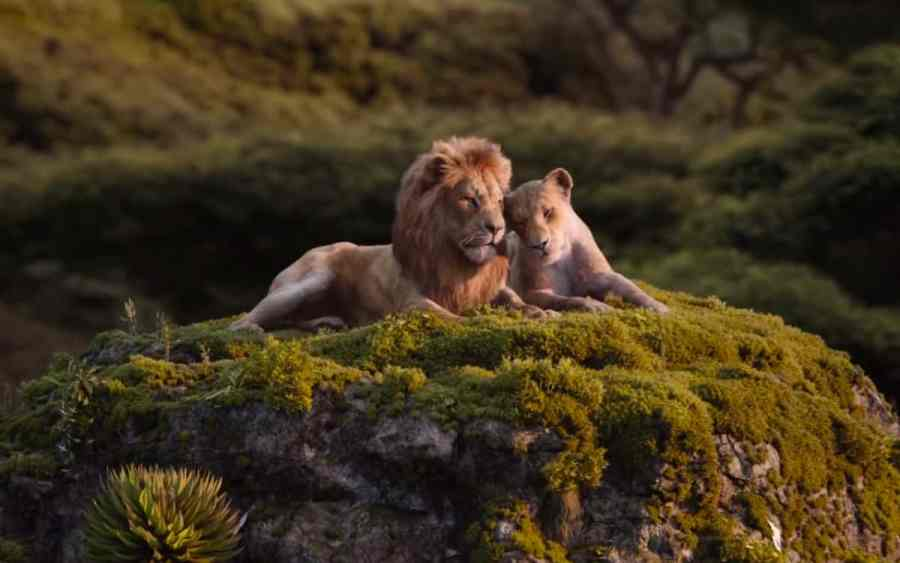 the lion king 2019 - 2